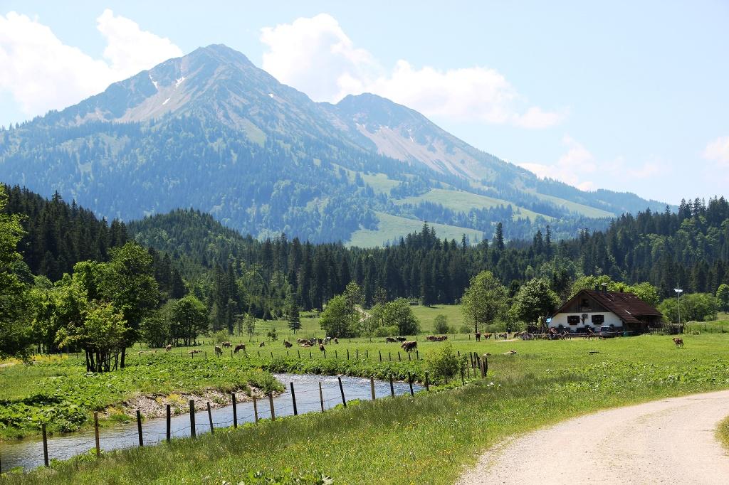 Kalbelehof Alpe - @ Autor: Julian Knacker - © Quelle: Pfronten Tourismus