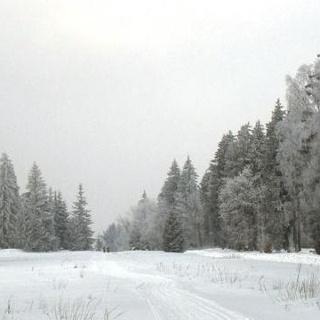 Trautenstein