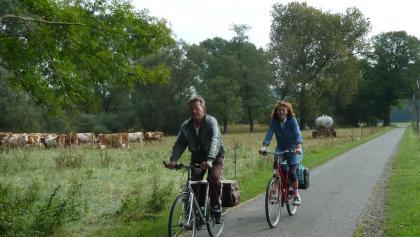 Radfahrer und Landschaft