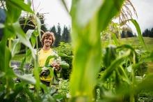 Die größten Zucchini ertnet im Kleinwalsertal Andi Haller