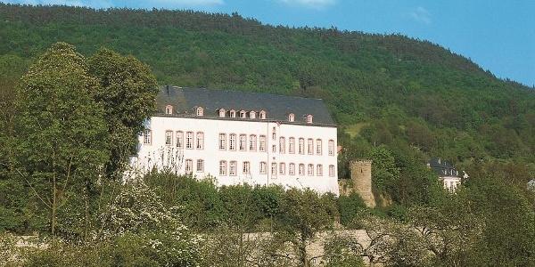 Sauer-Radweg_Blick auf Burg Bollendorf, die um 700 entstanden ist.