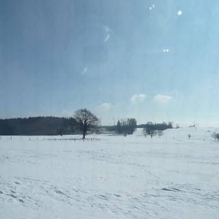 Winterlandschaft an der Loipe Durach (1)