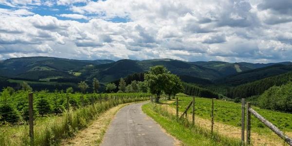 """Wanderweg Richtung """"Harbecker Kreuz"""""""