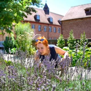 Kräutergarten Kloster Hornbach