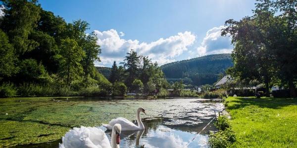 Teich in Winkhausen