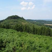 Tönsbergblick von Hunekenkammer