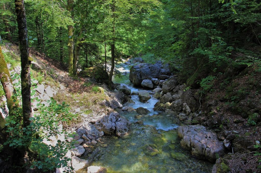 Wanderung durch das Achtal - @ Autor: Julian Knacker - © Quelle: Pfronten Tourismus