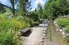 Kneippbecken im Alpengarten - @ Autor: Julian Knacker - © Quelle: Pfronten Tourismus