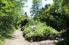 Alpengarten Pfronten - @ Autor: Julian Knacker - © Quelle: Pfronten Tourismus