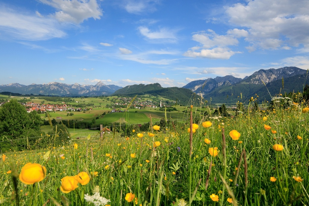 Ausblick vom Bergwiesenpfad auf Pfronten - @ Autor: Julian Knacker - © Quelle: Pfronten Tourismus