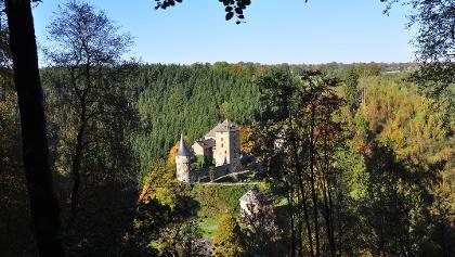 Blick auf Burg Reinhardstein