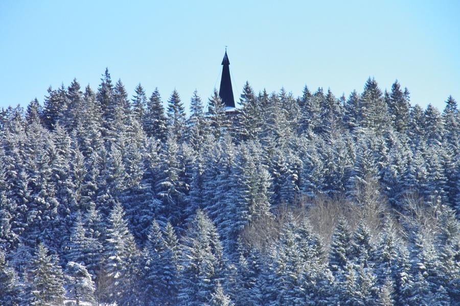 Winter - Herrischried: Gugelrunde - Winterwanderung