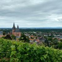 Katharinenkirche und Oppenheim