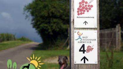 Wegekennzeichen Traubenpfad 4