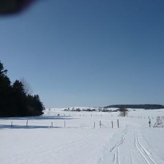 Am Schorenmoos (Blick Richtung Hörensberg)