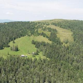 Almlandschaft bei Bernsteinhütte