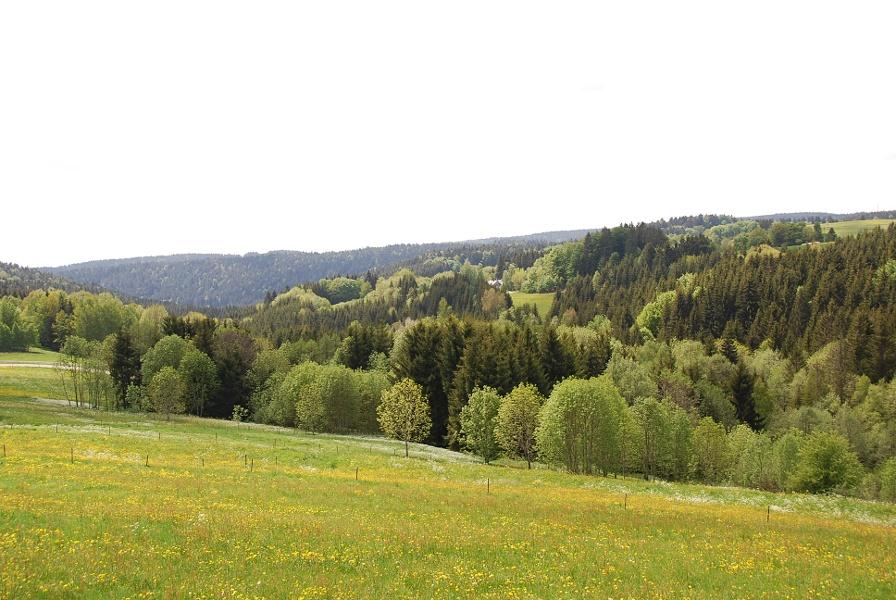 Dachsberg: Kleine Dachsberg-Runde