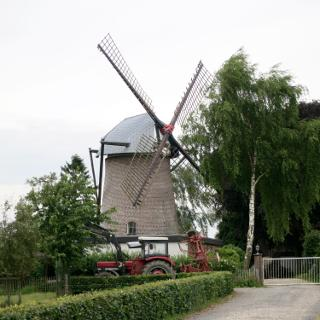 Windmühle in Wemb