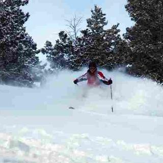 Fotolia_skiing powder@Joseph Pankey