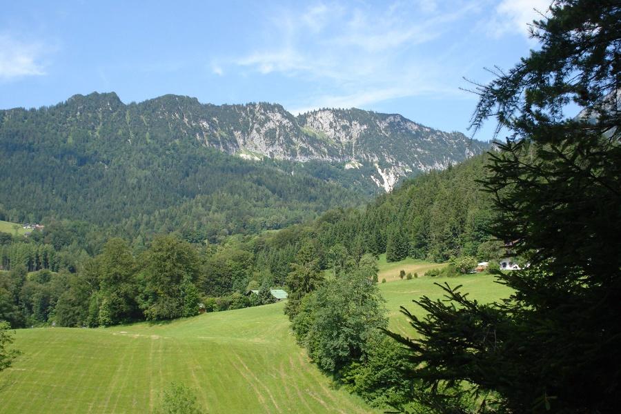 Am Bachwaldweg in Blickrichtung Rauer Kopf