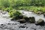 natürliche Ruhr bei Bestwig