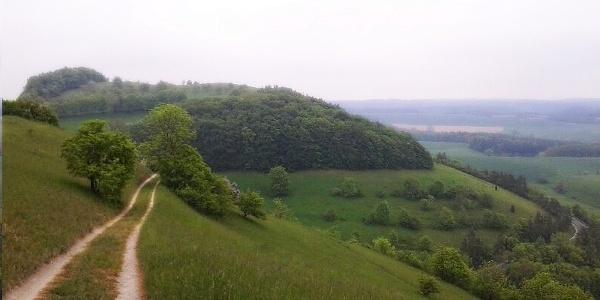 Wanderweg im Naturschutzgebiet Dohlenstein