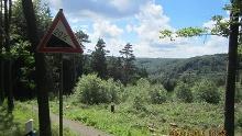 Hermannsdenkmal & versteckte Wege im Teutoburger Wald