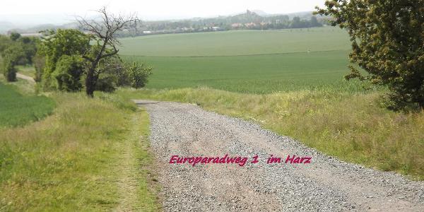 Der Europaradweg R1