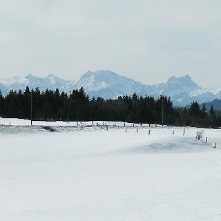 Beim Schmuttersee vor Falkenstein (rechts im Mittelgrund) Thannheimer Gebirge (im Hintergrund)