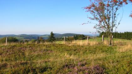 So ein Ausblick entschädigt doch jeden steilen Aufstieg…Lasst Euren Blick in die Ferne schweifen und genießt die herrliche Aussicht vom Kahlen Pön bei Titmaringhausen.