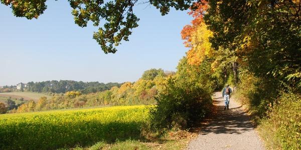 Am Waldrandweg