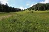 Himmelreich am Kienberg - @ Autor: Julian Knacker - © Quelle: Pfronten Tourismus