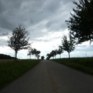 Straße von Wagenbach nach Siegelsbach