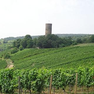 Ruine Scharfenstein und Weinberge Kiedrich