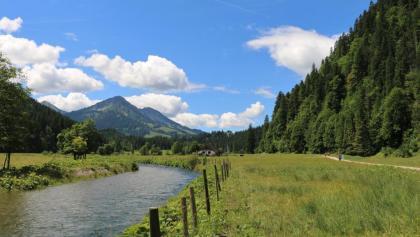 Kalbelehof Alpe im Vilstal