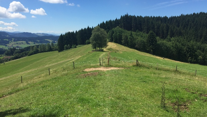 Sonneck bei Weitnau im Allgäu