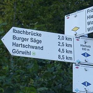 Dachsberg: Rundtour Fröhnd-Hierholz 1