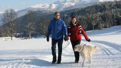 Winterwandern in Ramsau am Dachstein