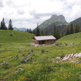 Auf dem Höhenweg nach dem ersten Anstieg Blickrichtung zum Aggenstein