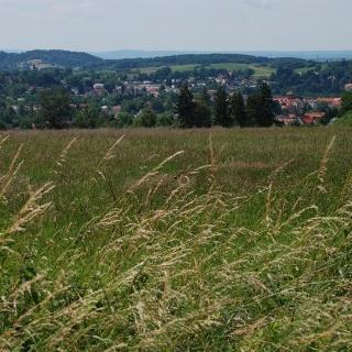 Blick über Osterode am Harz