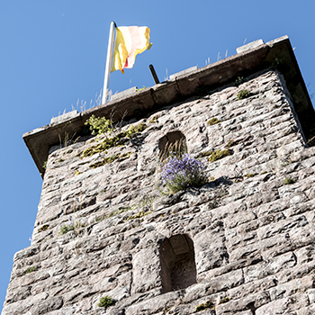 """Aussichtsturm """"Habererturm"""" in Bad Griesbach"""