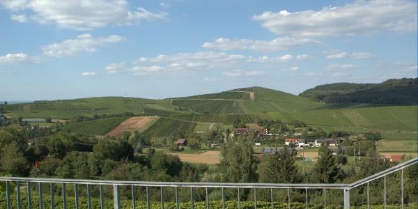 Aussicht vom Eselsberg