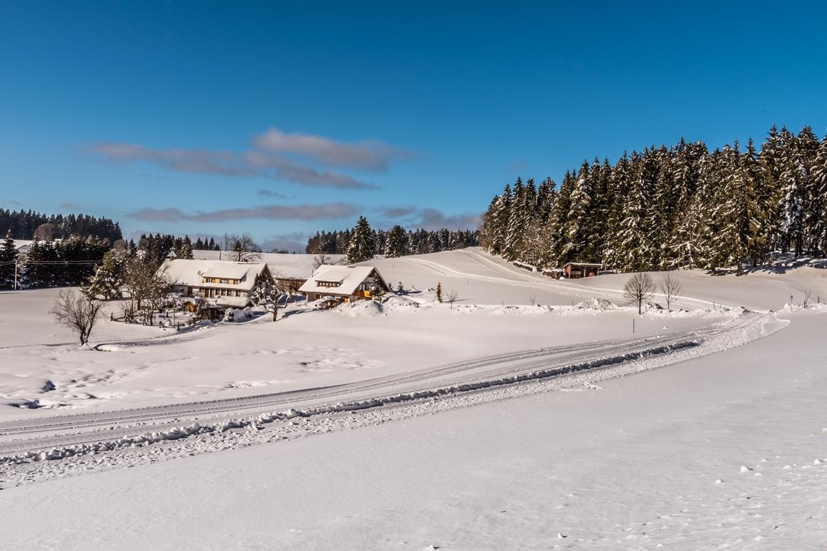 Loipen Hotzenwald