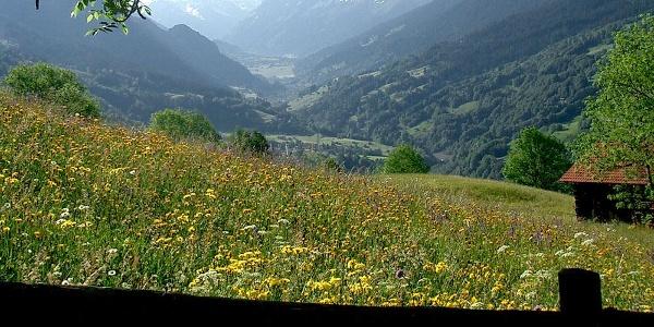 Blick von Plävigin Richtung Klosters