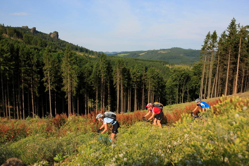 Singletrails sauerland Sauerland Radwelt - Bike Projects