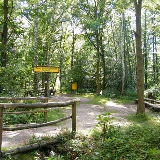 Im Poppental lädt ein schattiger Picknickplatz am Bach zur Rast ein.