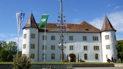 Immendingen, Oberes Schloss