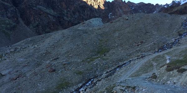 Nach der Fußgängerbrücke geht der Zustieg zum Klettersteig gerade weiter (nicht entlang des Baches rauf oder runter).