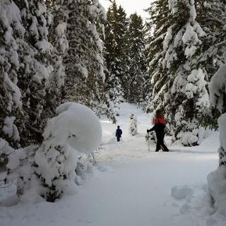 Winterwandern richtung Liegalm