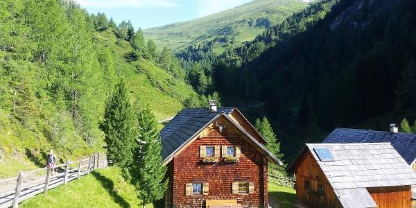 Forstweg Richtung Sticklerhütte